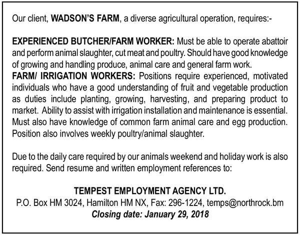 Experienced Butcher/Farm Worker and Farm/Irrigation Workers